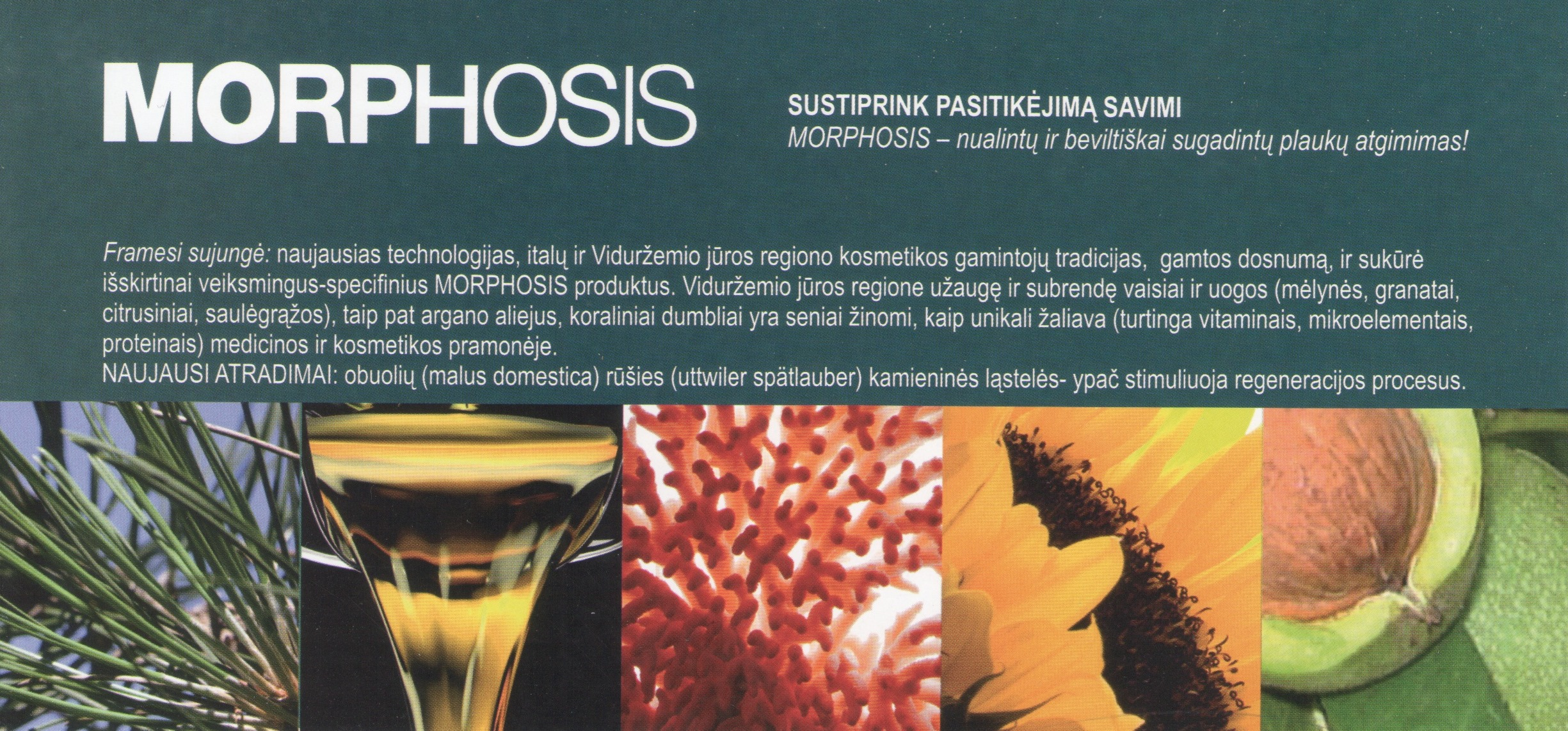 Morphosis - plaukų priežiūra